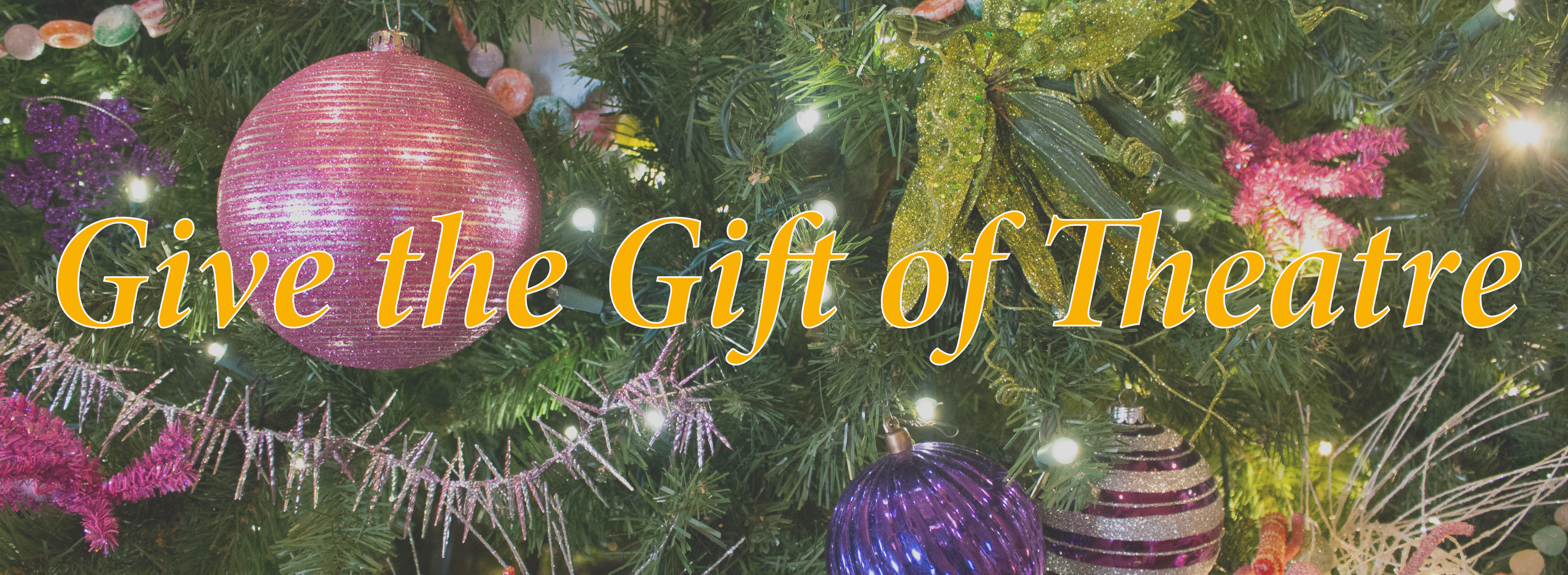 Give the Gift of Theatre – Holiday Specials