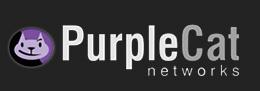 purple-cat
